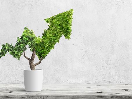 L'innovazione sostenibile fa bene al business