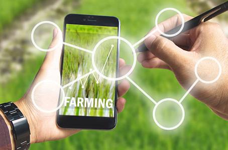 Agricoltura 4.0: dai droni ai sensori. Facciamo il punto.