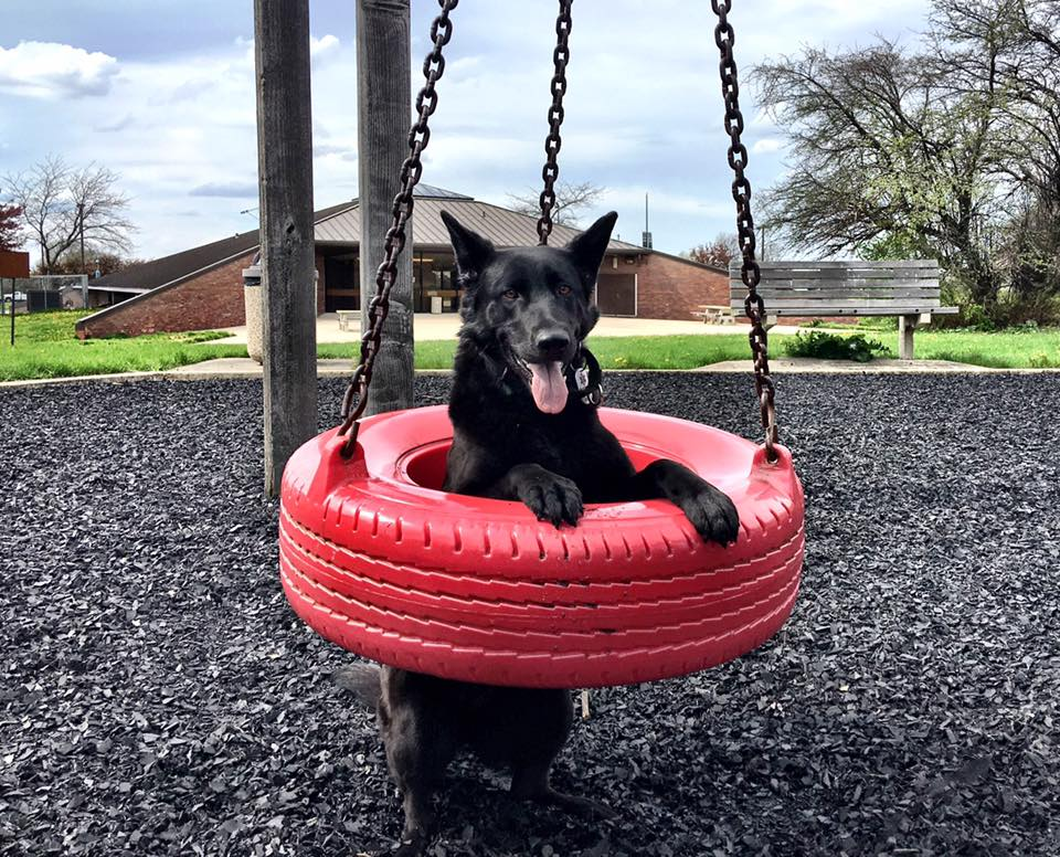 Sheena in a tire swing