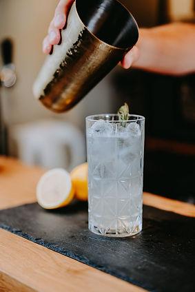 gin-ov-arlon-orolaunum-vicus-biologique-