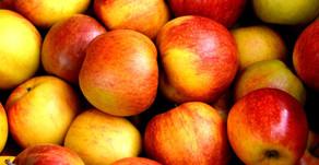 Dr ILYAS discusses Apple Cider Vinegar with Insider