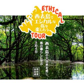 西表島オンラインツアー&モニターツアー開催のお知らせ
