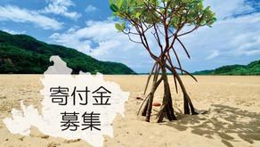 世界自然遺産「西表島」の自然を守る「西表財団」その設立資金のクラウドファンディングを実施中