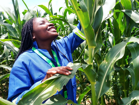 Girls and Women in Agriculture