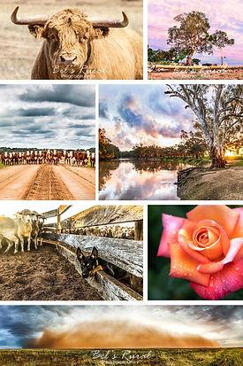 Bel's Rural Photography Profile.jpg