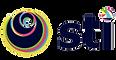 Logo6-STI-Logo-Jul2019-Small.png