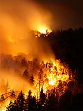 forest_fire_southern_california.jpg