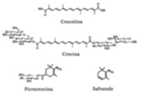 Molecole dello zafferano