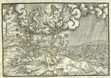 Il mito di Croco e Smilace