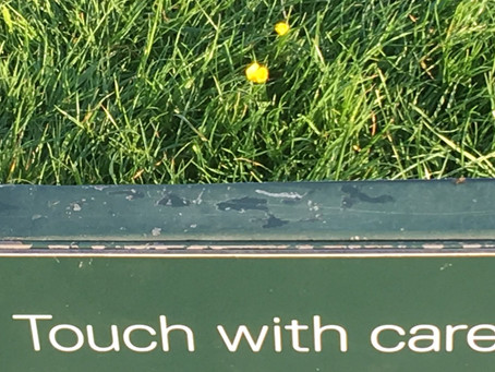 Touch With Care
