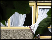 Windows-Roelof-Bakker.jpg