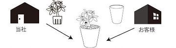 植物のOEM 生産・加工・物流