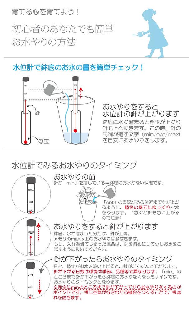 ハイドロカルチャー 水位計 水やり