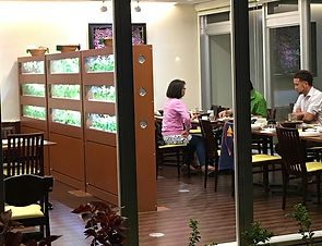 植物工場 レストラン