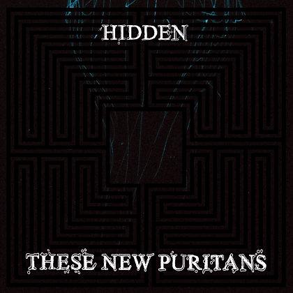 These New Puritans - Hidden