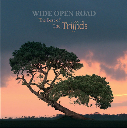 The Trifiids - Wide Open Road