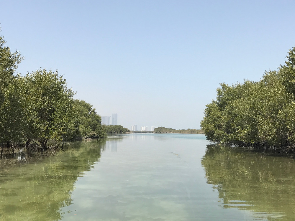 View of Abu Dhabi from The Mangroves