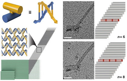 dna nanotechnology crisscross