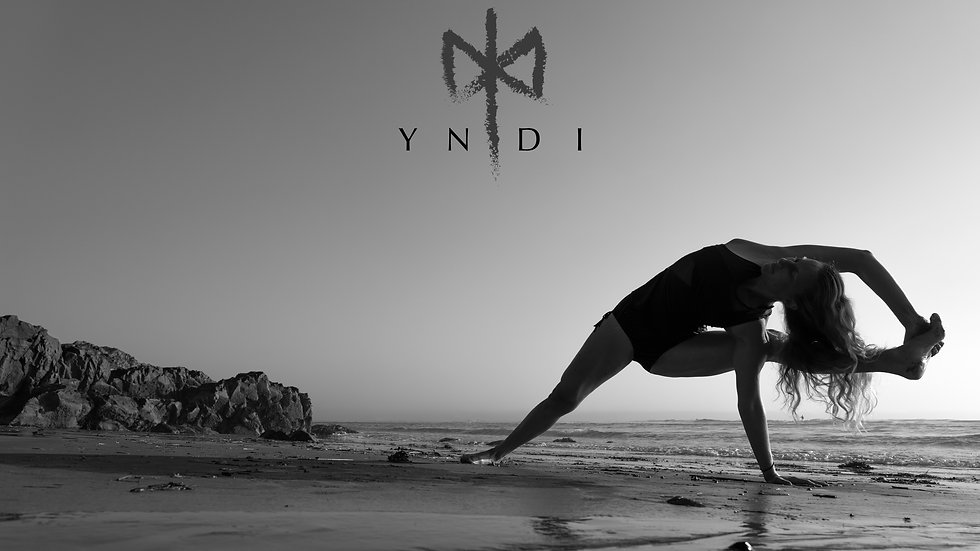 1 Month Subscription to YNDI