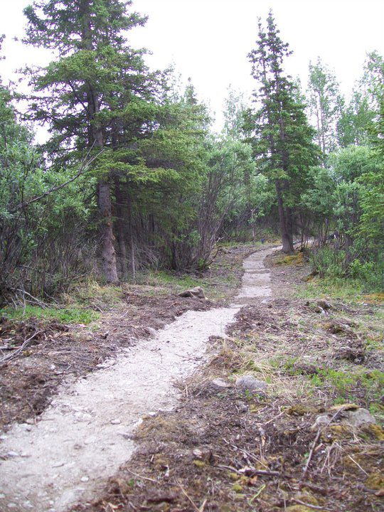 Part of our Trail