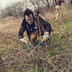 Earth Day Invasive Removal