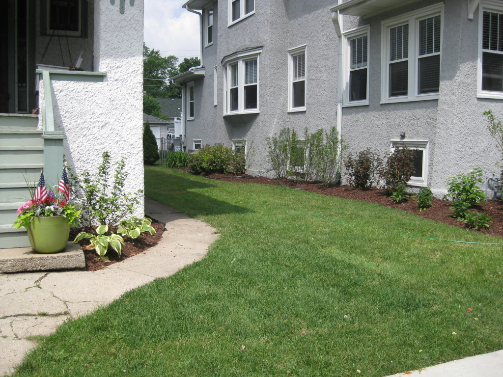 Landscape and Lawn maintenance
