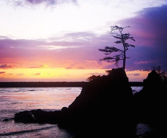 Three Graces - Tillamook Bay