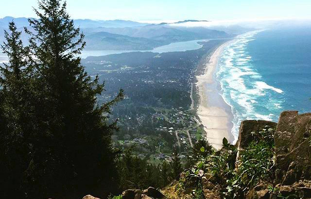 Guest Post: Manzanita - A First Time Visitor