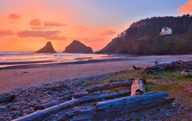 Zika Virus - 5 Resources Concerning the Oregon Coast and Manzanita
