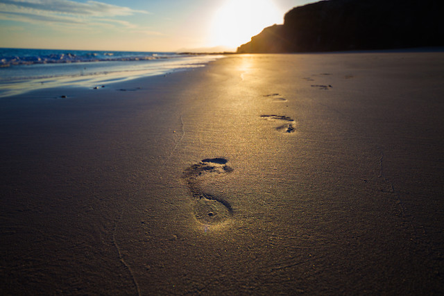 Retreat at our oceanside Manzanita vacation rentals.
