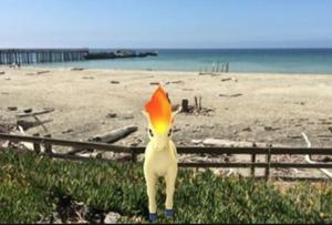 Pokemon Go Rockaway Oregon
