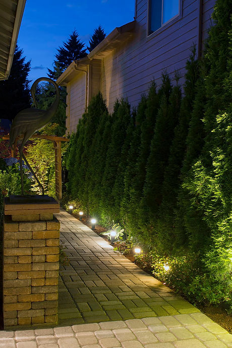 Nestor's Landscape Lighting