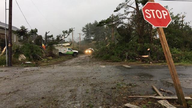 Manzanita Tornado damage 03