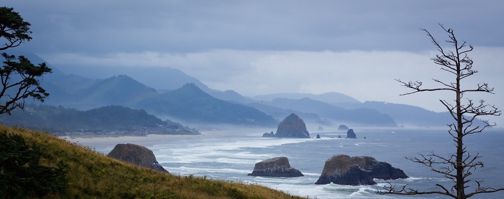 Eating with special diets on the Oregon Coast