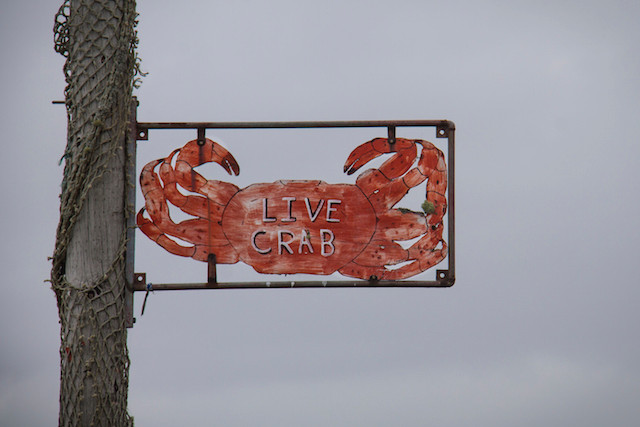 Crabbing Oregon