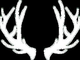schimanszky-logo.png