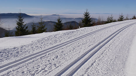 landscape-snow-winter-weather-skiing-sea