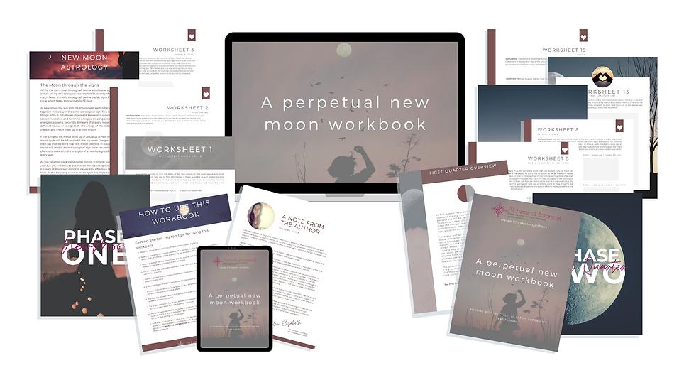Copy of TEMPLATE_ The Ultimate Workbook