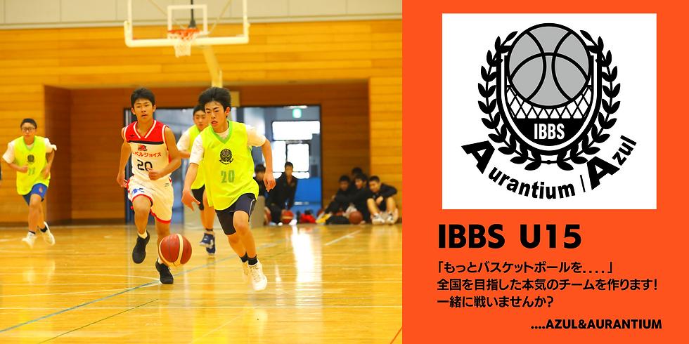 IBBS バナー.png