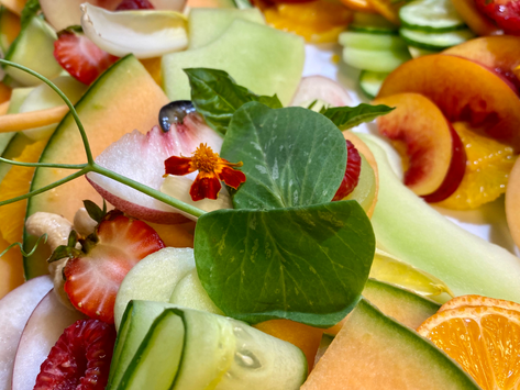 5 Tips from a Vegan Chef to help plant-based beginners be successful