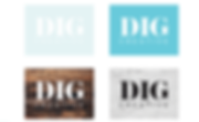 DIG Branding 6.png