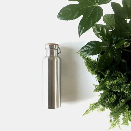 750ml Insulated Bottle