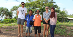 Conservation and Politics of Sea Turtles in Malaysia
