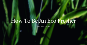 Eco Fresher Advice