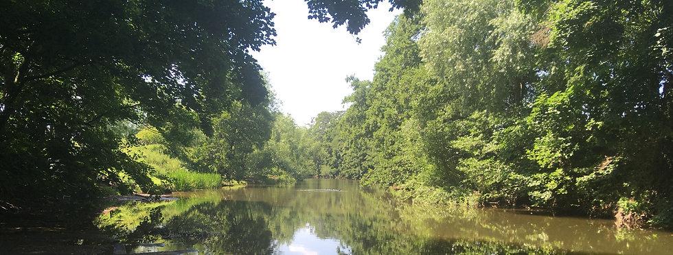 river cropped.jpg