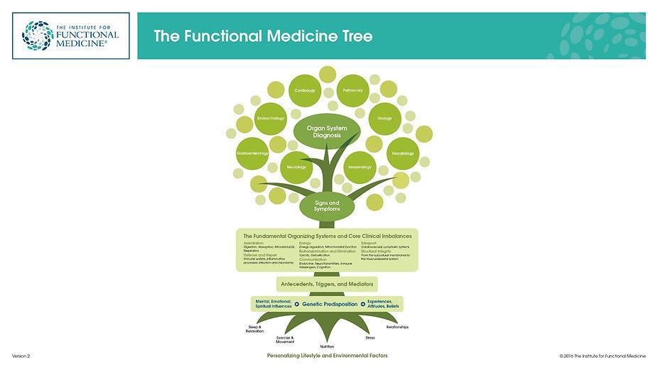 IFM_Tree_CC_ppt_16x9.jpg