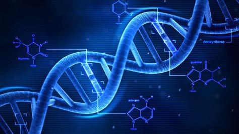Les facteurs génétiques de l'autisme
