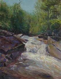 Twenty Mile Creek