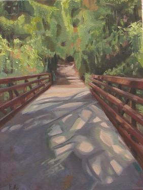 A Sun Dappeled Bridge