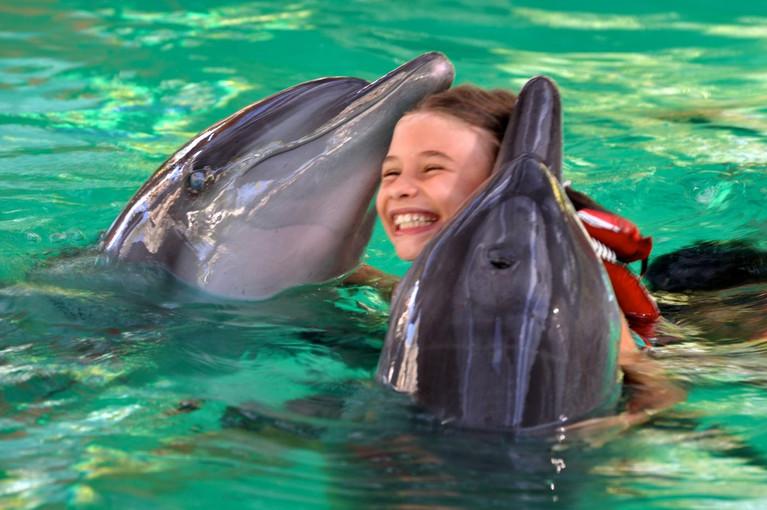marie_dolphins.jpg